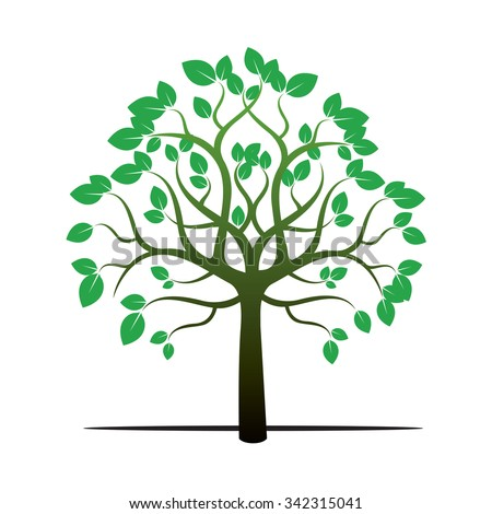 tree and green leafs vector