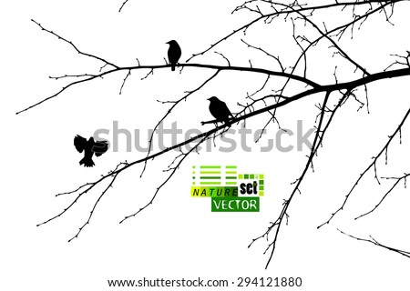 tree branches background with
