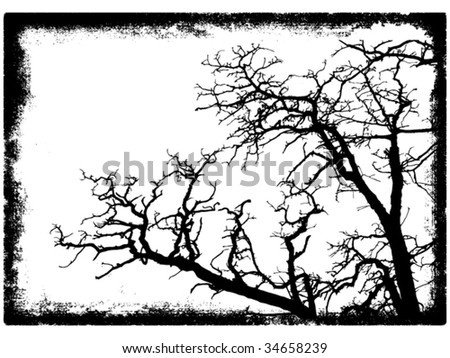 tree branches silhouette in grunge frame vector illustration