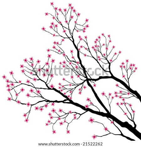 Tree Branches with Pink Flowers