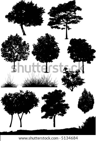 tree, bush and background