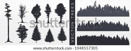 Tree collection, Forest silhouette, isolated on white, vector illustration.