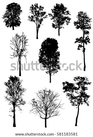 Tree collection-vector silhouette illustration