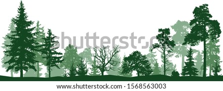 tree forest vector silhouette
