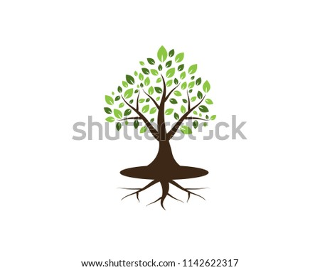 Tree icon concept of a stylized vector illustration