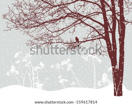 tree in the snowy day