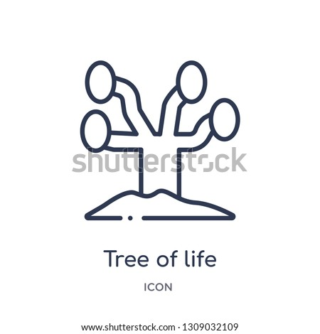 tree of life icon from religion outline collection. Thin line tree of life icon isolated on white background.