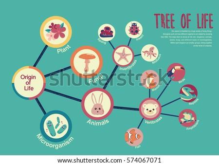 tree of life info graphic