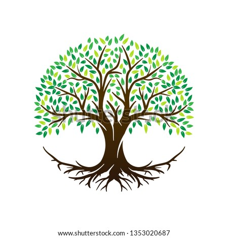 Tree of Life or Tree and roots vector with round shape.
