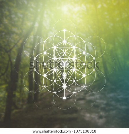 Tree of life sacred geometry kabbalah symbol in front of repeating interlocking circles pattern and blurry photo background.