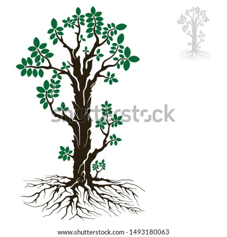 tree of life with an extraordinary green color