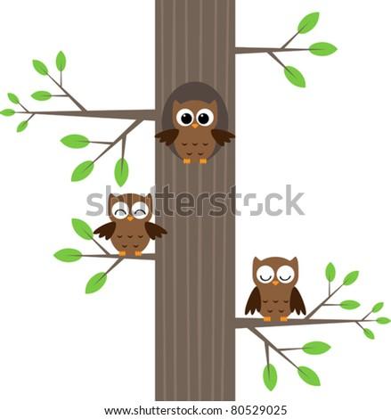 Tree owls sitting on a tree with a hole
