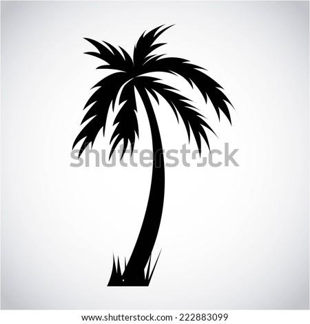 tree palm graphic design
