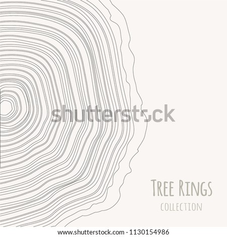 tree rings texture collection