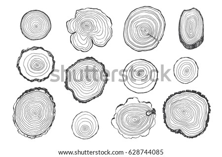 Tree rings vector line graphic set