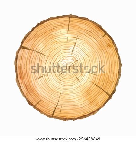 tree rings watercolour
