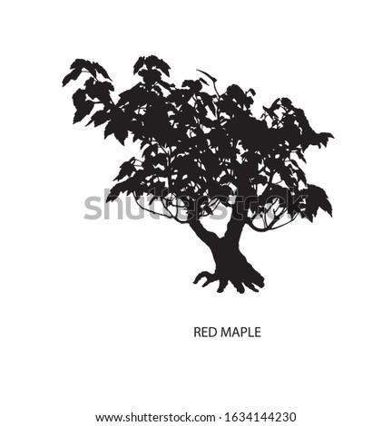 tree silhouette icons on white