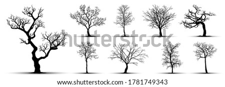 tree silhouette isolated on