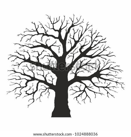 tree silhouette on white...