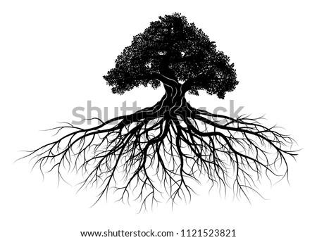 tree silhouette on white background. Vector illustration. Stock fotó ©