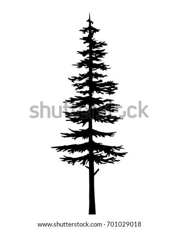 tree silhouette pine, cypress evergreen, cedar forest wood vector illustration.