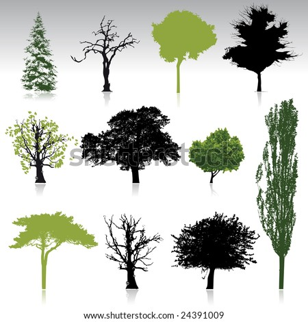tree silhouettes collection for