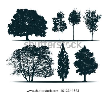 tree silhouettes   green oak