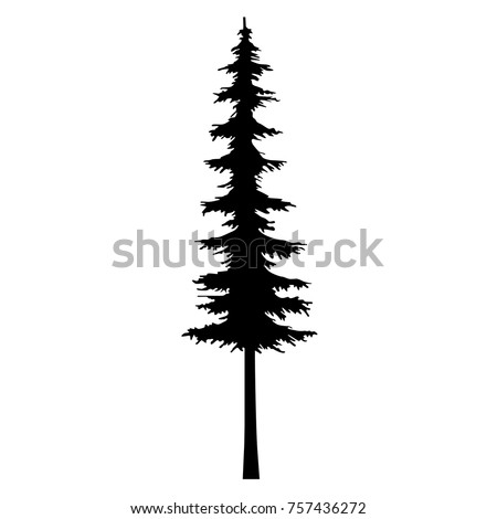 Silhouette Conifer Trees Download Free Vector Art Stock Graphics