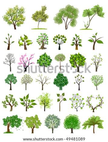 Tree vector icon - stock vector