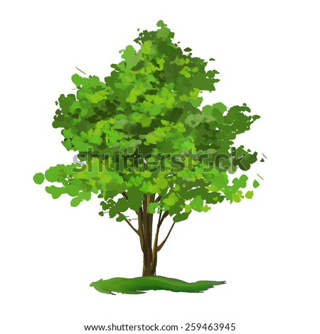 tree vector illustration  hand