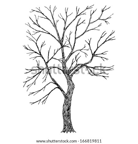 Tree. Vector. Sketched