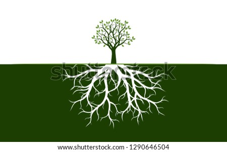 Tree with Leaves and Roots. Vector Illustration. Plant and Garden.