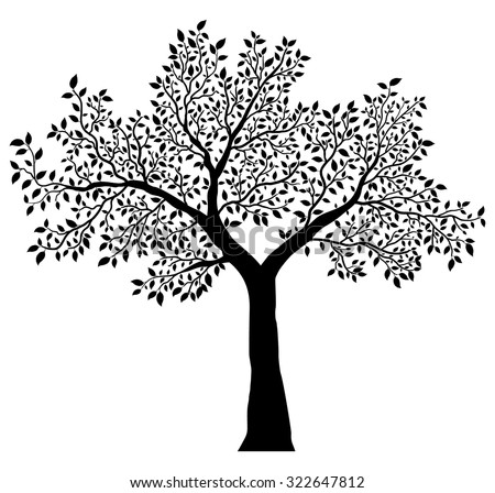 tree with leaves vector