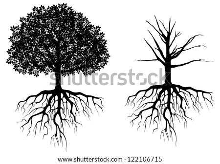 tree with roots vector illustration download free vector art rh vecteezy com tree roots vector download tree roots vector free