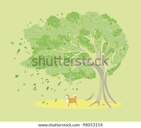 Trees and dog
