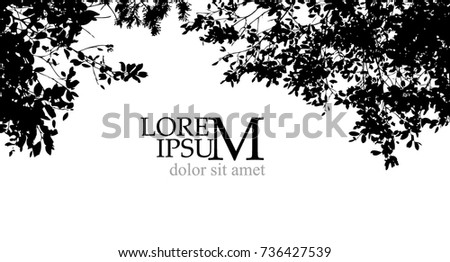 trees background forest vector