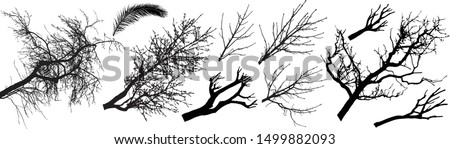 trees branch silhouette set
