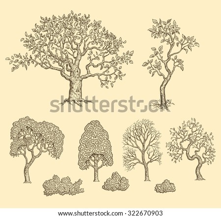trees design set hand drawn