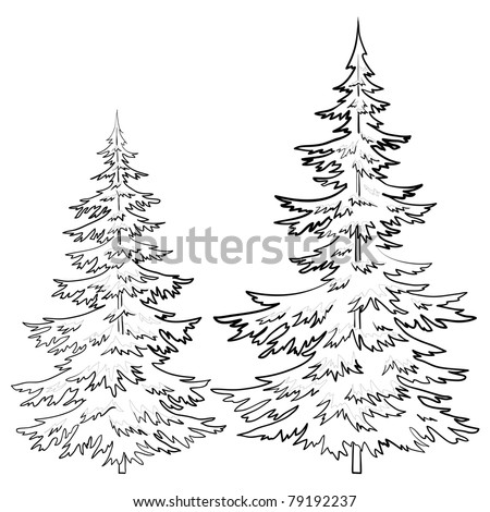 Trees, fur-tree, vector, christmas winter symbol, isolated, contours