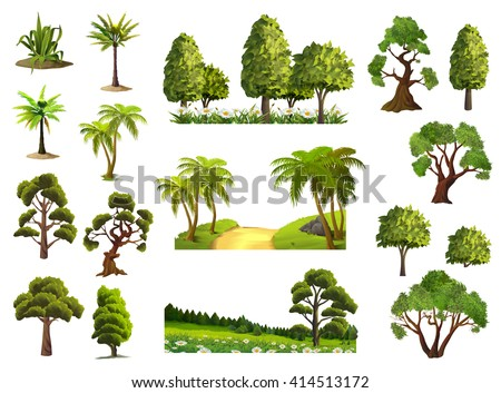 trees  nature  forest  vector