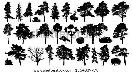 trees set isolated on white