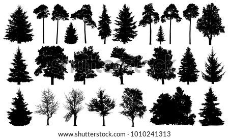 Trees set silhouette. Coniferous forest. Isolated tree on white background.