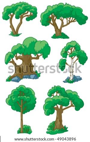 trees set  1  willow  beech