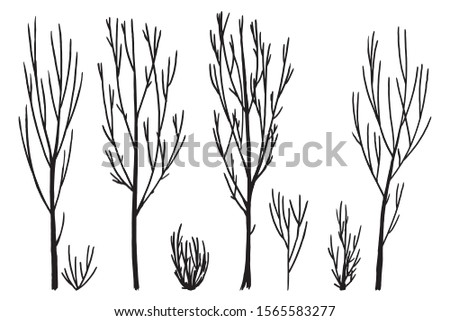 Trees silhouettes without leaves, elements set white isolated. Basis graphics