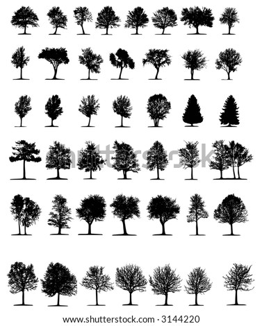 Trees 2 (vector)