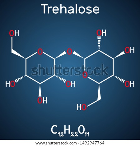 Trehalose, tremalose carbohydrate molecule. Also known as mycose. Is  disaccharide consisting of two molecules of glucose.  Structural chemical formula on the dark blue background. Vector illustration