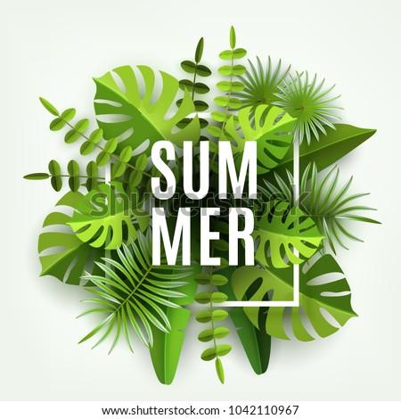 trendy summer tropical leaves