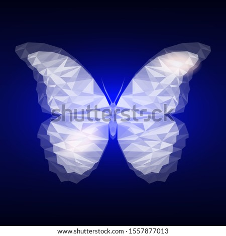triangle lighting butterfly on