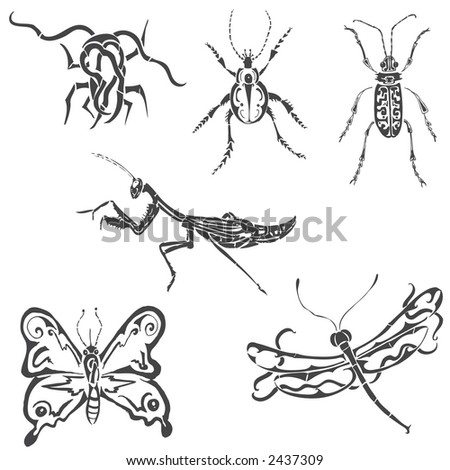 tribal insects