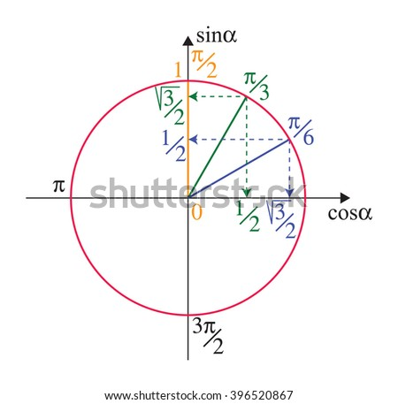 Trigonometric unit circle